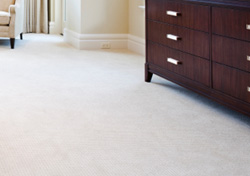 Anthem Carpet Cleaners